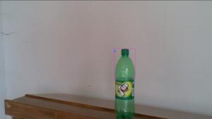 Bottle Detection