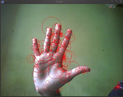 SURF Keypoints of my palm